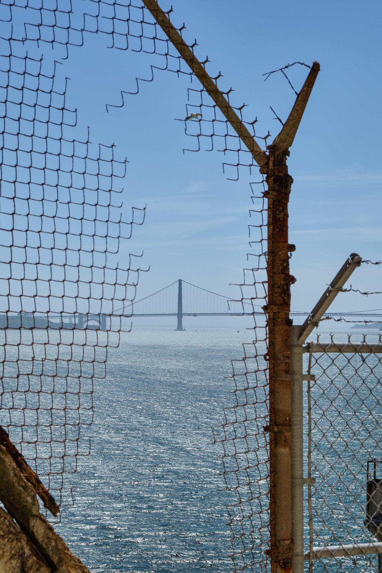 16 - L\'évadé D\'Alcatraz (3)
