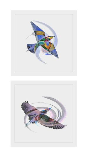 1 - Le P'tit Oiseau De Toutes Les Couleurs (1)