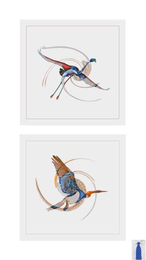 1 - Le P'tit Oiseau De Toutes Les Couleurs (2)
