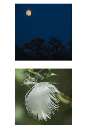 2 - Au Clair De La Lune (2)